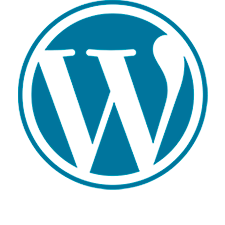 Curso SEO WordPress en Murcia