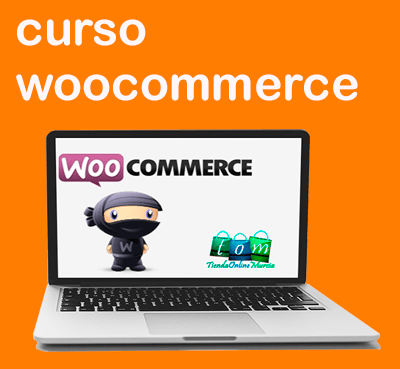 Curso woocommerce online