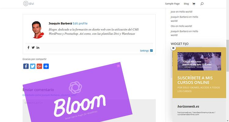 Cómo añadir Ventanas deslizantes,  Fly ins o slide ins en WordPress con Bloom (La alternativa al PopUp)